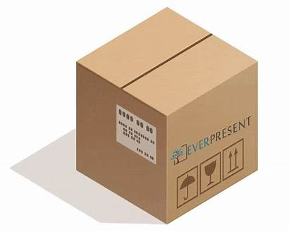 Film Digital Box Reel Transfer Everpresent Dvd