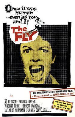 fly  film wikipedia