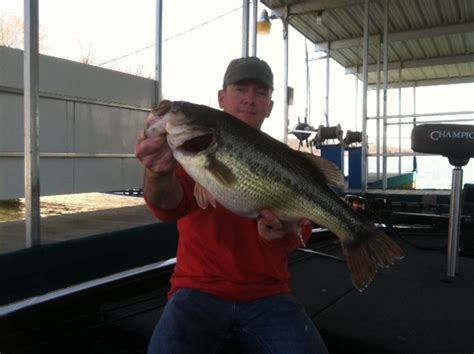 current table rock lake fishing report buy retino a cream 0 05 without prescription from trusted
