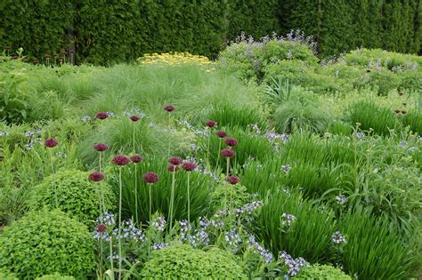 plants gardening chicago s lurie garden gardeninacity