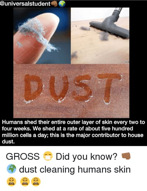 Humans Shed Skin by 0 Humans Shed Their Entire Outer Layer Of Skin Every Two
