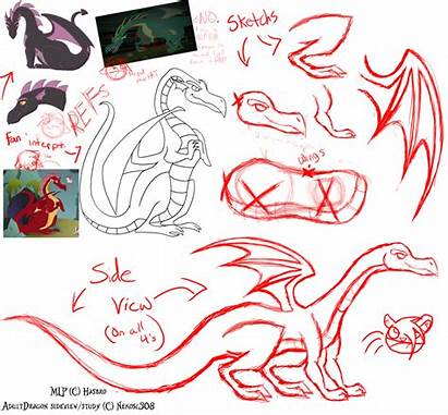 Mlp Dragon Fim Study Adult Deviantart Drawings