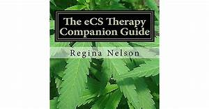 The Ecs Therapy Companion Guide  A Reference Source For
