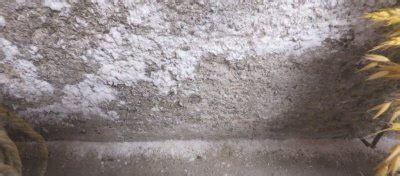 efflorescence  basement environix