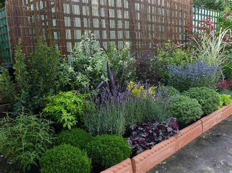 25 best ideas about low maintenance garden on