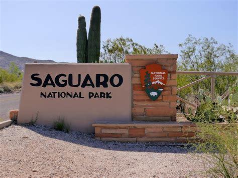 tucson visitors bureau travel journal javelina rocks overlook saguaro