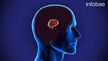 Capacidad Cerebral Pastilla Aumenta Rendimiento Taringa Revolucion