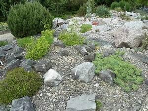 Wie Gestalte Ich Einen Garten : steingarten bild von sukkulenten sammlung z rich z rich tripadvisor ~ Whattoseeinmadrid.com Haus und Dekorationen