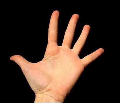 Hand Open Wide Domain Resolution Hit Hands