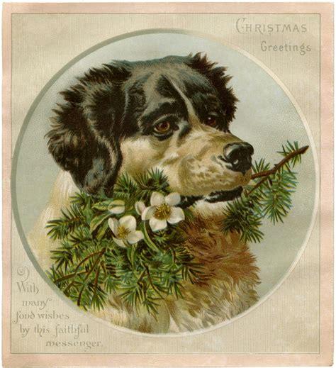 vintage christmas dog image  graphics fairy
