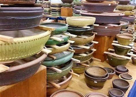vendita vasi per bonsai vendita piante e fiori pescara valpescara garden