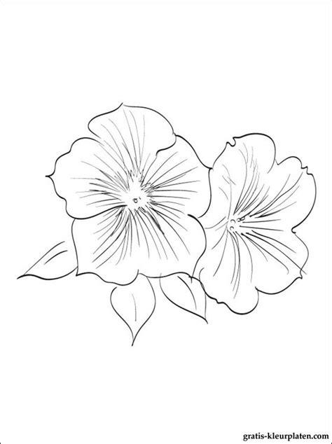 Petunia Kleurplaat kleurplaat een petunia gratis kleurplaten