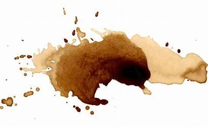 Coffee Splatter Transparent Splash Watercolor Stains Watercolour