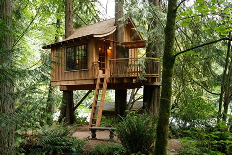 House In Tree by Treehouse Point