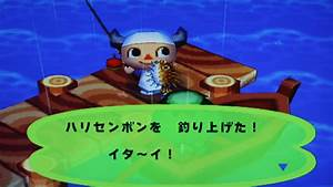 Puffer Fish Animal Crossing Wiki Fandom Powered By Wikia