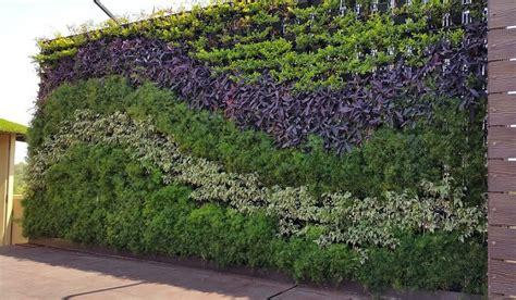 tukang taman vertikal jasa pembuatan vertical garden