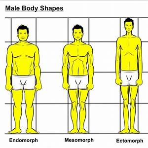 Best 25+ Mens Body Types ideas on Pinterest   Groom and ...