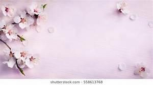 Flower Background Images, Stock Photos & Vectors