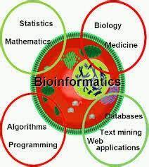 percobaan vi bioinformatika praktikum biokimia