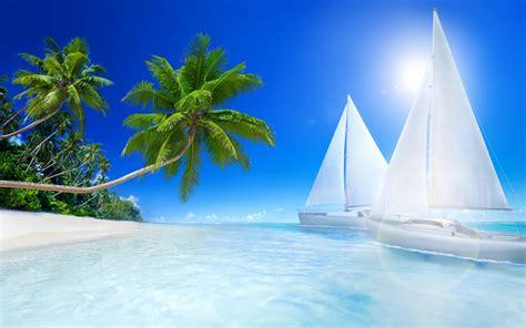 tropical beach palms  sailboat   sea