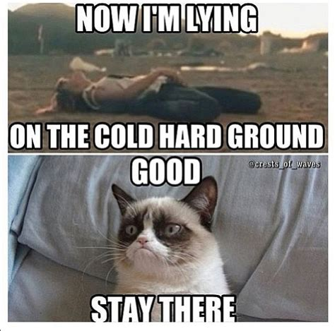 Grumpy Cat Funniest Memes - 30 most funny grumpy cat pictures and memes entertainmentmesh