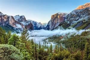 Nature, Landscape, Mountain, Yosemite, National, Park, Usa, Trees