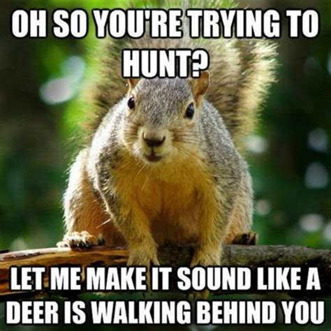 Hunter Meme - 10 best hunting memes