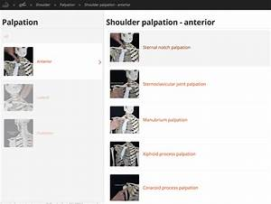 Range Of Motion  Manual Muscle Test And Palpation App