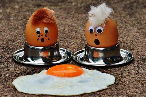 ei kochen mit eierkocher wie lange muss ein perfektes ei kochen eieruhr shop de