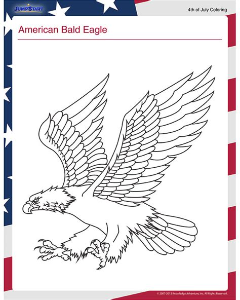 american bald eagle view  july  coloring page