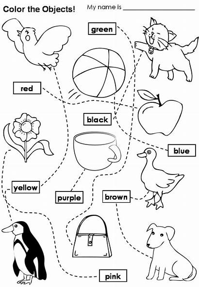 Colors Colours English Worksheets Learning Teacher Take