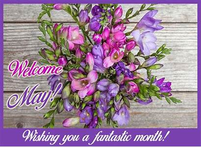 Welcome Flowers Month Flower Card Cards Greetings