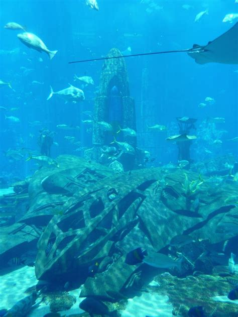 17 Best Images About Under Water Lost Cities Or Statues