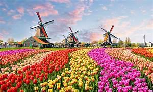 Haus Kaufen In Holland : ferienhaus oder ferienwohnung in holland niederlande kaufen das haus ~ Frokenaadalensverden.com Haus und Dekorationen