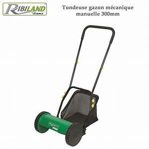 Tondeuse A Gazon A Main : tondeuse gazon m canique manuelle 300mm ~ Carolinahurricanesstore.com Idées de Décoration