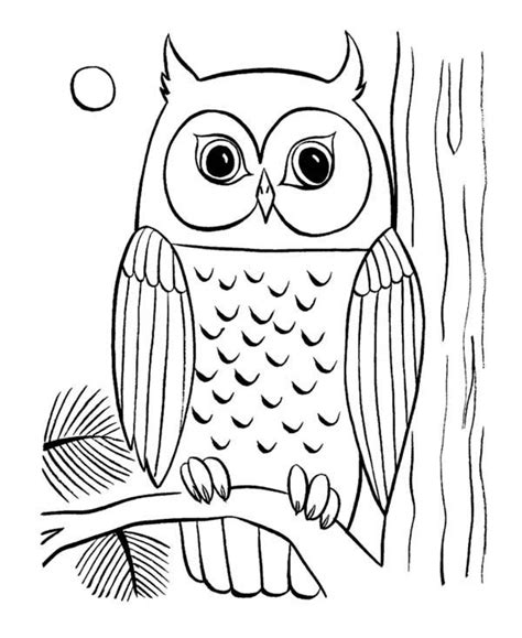 Pictures Of Owls To Color by Coloring Pages Of Owls To Print Owl Coloring Page 29