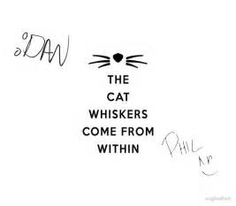 dan and phil cat whiskers quot dan and phil signatures the cat whiskers come from