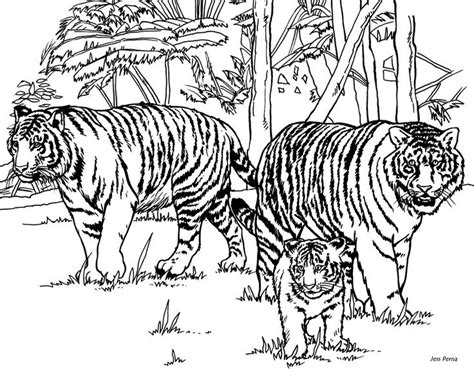 intricate cat coloring pages for adults tiger coloring