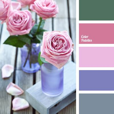 color palette  color palette ideas