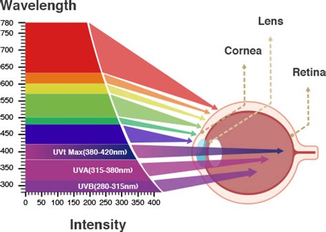 blue light macular degeneration eye care technology