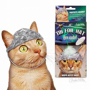 Tin Foil Hat for Cats – Archie McPhee