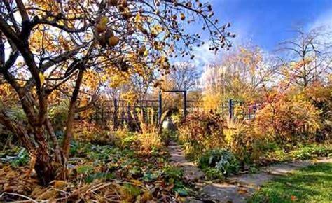 Garten Herbst Stauden Schneiden by Diese Stauden Sollten Sie Im Herbst Nicht Schneiden