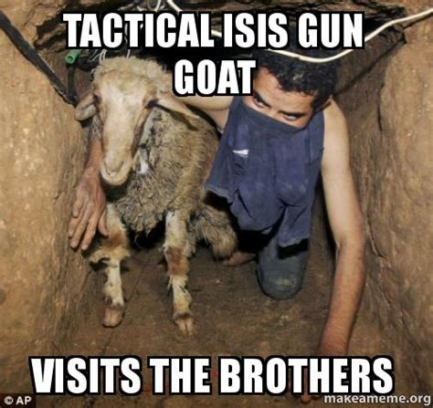 Isis Goat Memes - funny goat isis pictures to pin on pinterest pinsdaddy