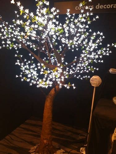 cherry blossom tree  led lights  hire rent