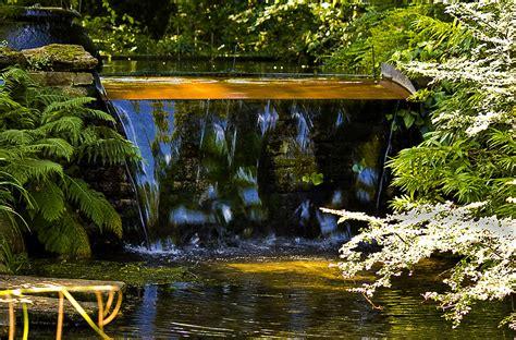 Japanischer Garten Leverkusen Kirschblüte by Japanischer Garten Leverkusen Foto Bild