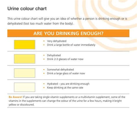 early pregnancy urine color why staying hydrated is for both conception and pregnancy