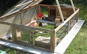 1000 images about meerschweinchen aussengehege guinea With whirlpool garten mit kratzbaum draußen balkon
