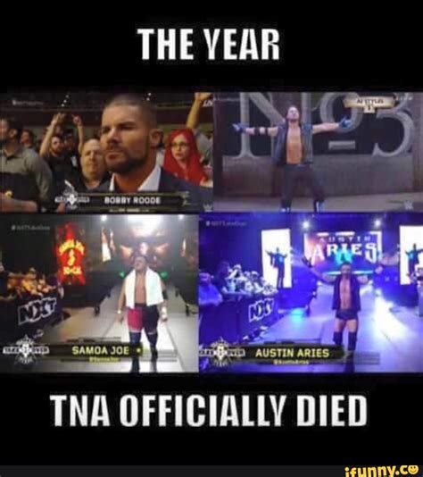 Tna Memes - related keywords suggestions for tna memes