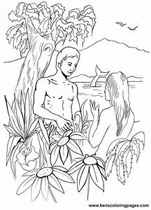 Bible day 6 creation Adam and Eve