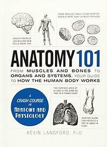 Top 10 Organs Anatomy Of 2020